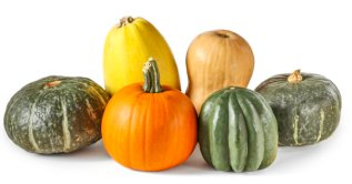 Assorted pumpkin and squash isolated on white